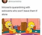 Extroverts who wont leave introverts alone