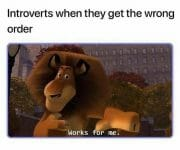 Introvert got the wrong order