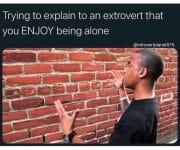 Introverts enjoy being alone