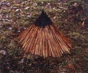 The natural artworks of andy goldsworthy