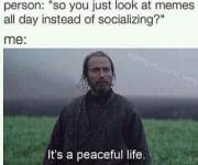 A peacefull life looking at memes all day instead of socializing